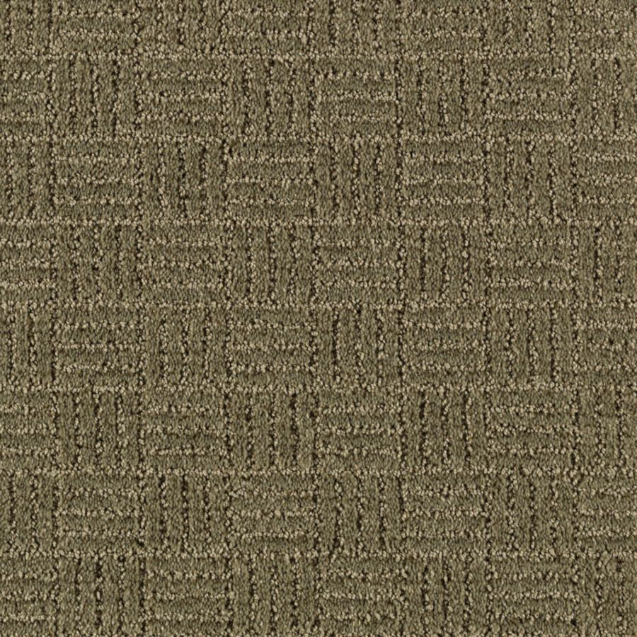 STAINMASTER Essentials Stylesboro Parsley Carpet Sample