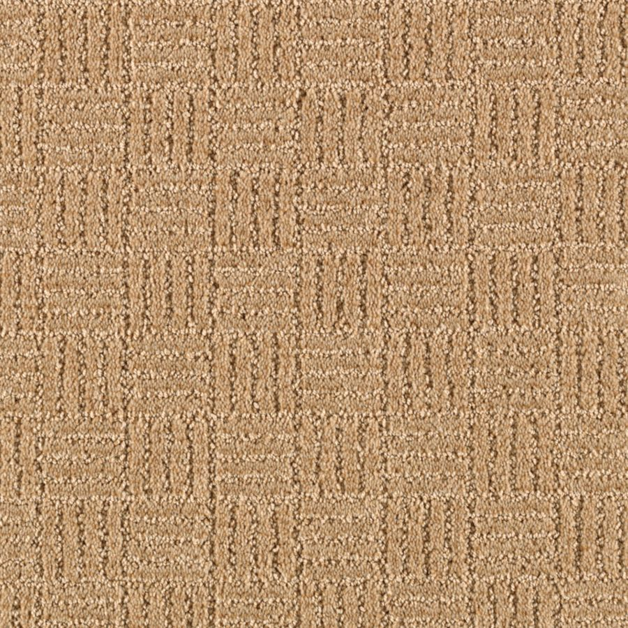 STAINMASTER Stylesboro Essentials Almond Butter Cut and Loop Carpet Sample