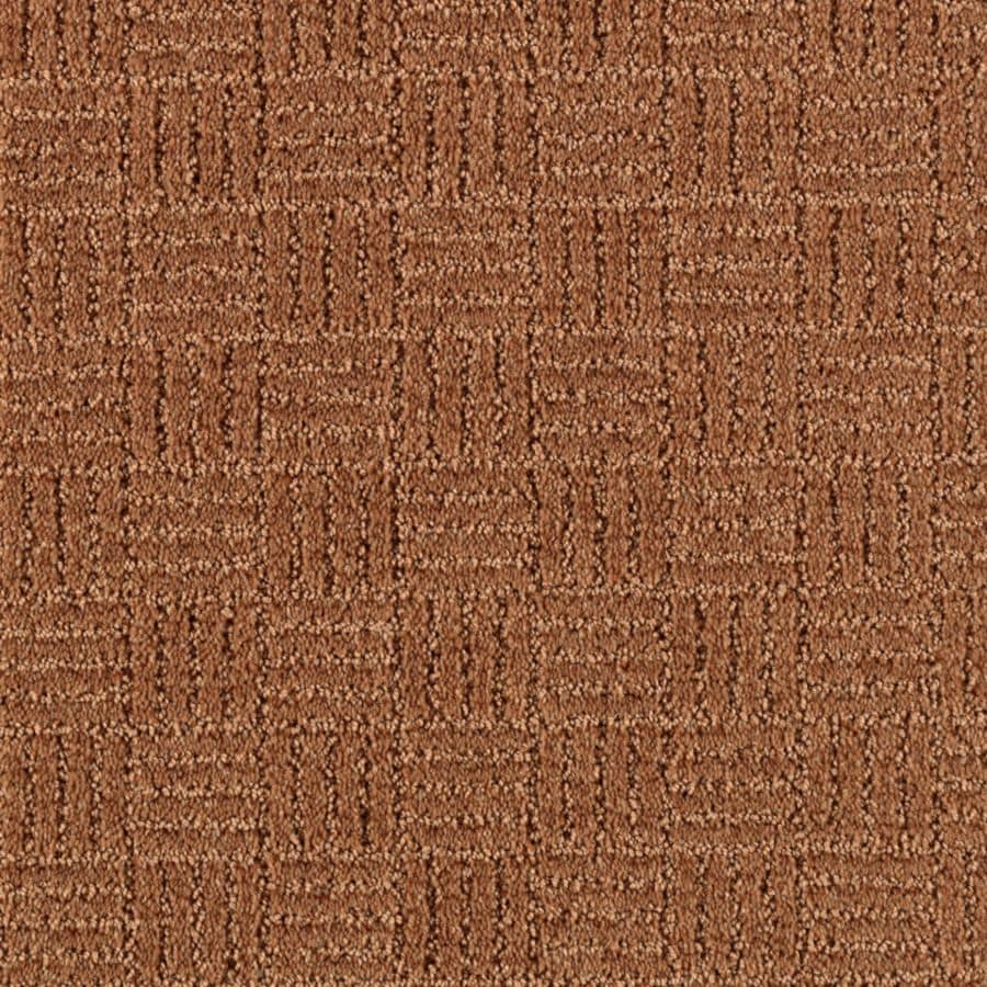 STAINMASTER Stylesboro Essentials New Penny Cut and Loop Carpet Sample