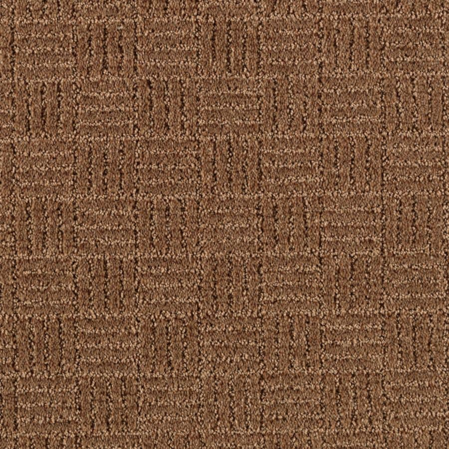 STAINMASTER Stylesboro Essentials Mocha Cut and Loop Carpet Sample