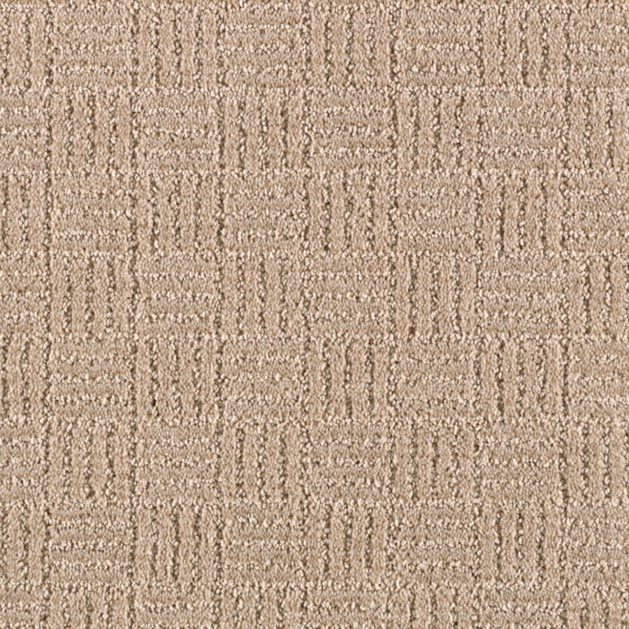 STAINMASTER Stylesboro Essentials Wild Rice Cut and Loop Carpet Sample