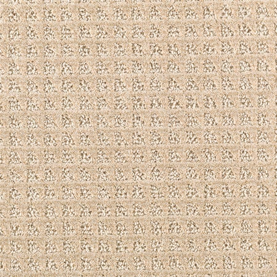STAINMASTER Essentials Designboro Desert Wind Berber/Loop Carpet Sample