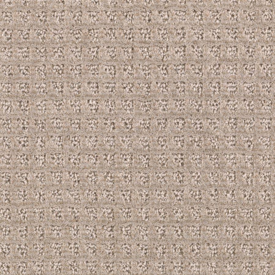 STAINMASTER Essentials Designboro Light Musk Carpet Sample