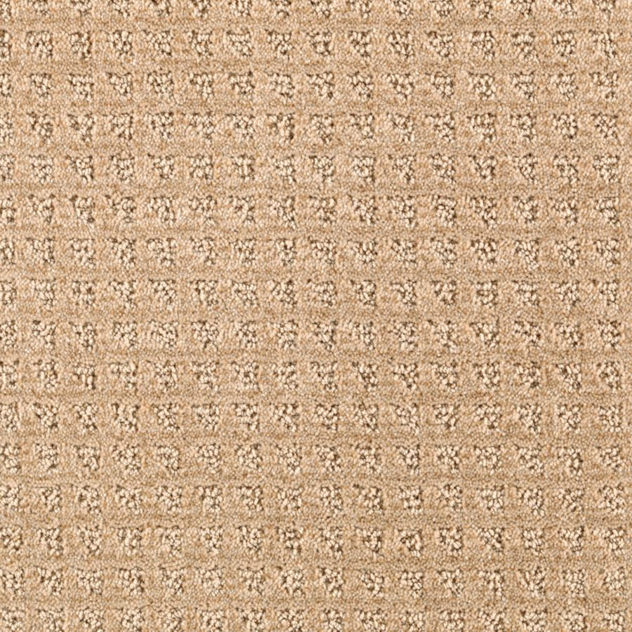 STAINMASTER Designboro Essentials Almond Butter Cut and Loop Carpet Sample