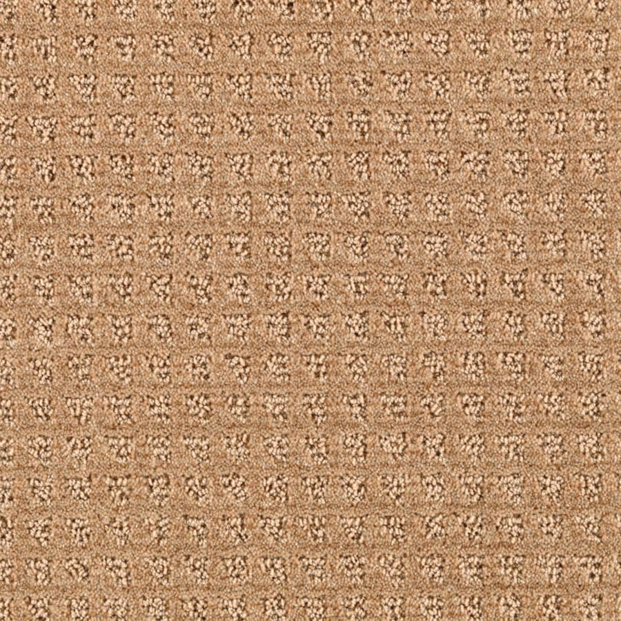 STAINMASTER Essentials Designboro Spiced Tea Berber/Loop Carpet Sample