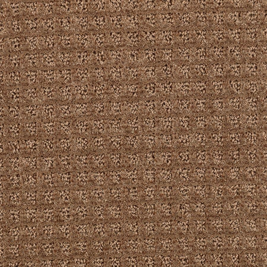 STAINMASTER Essentials Designboro Mocha Carpet Sample
