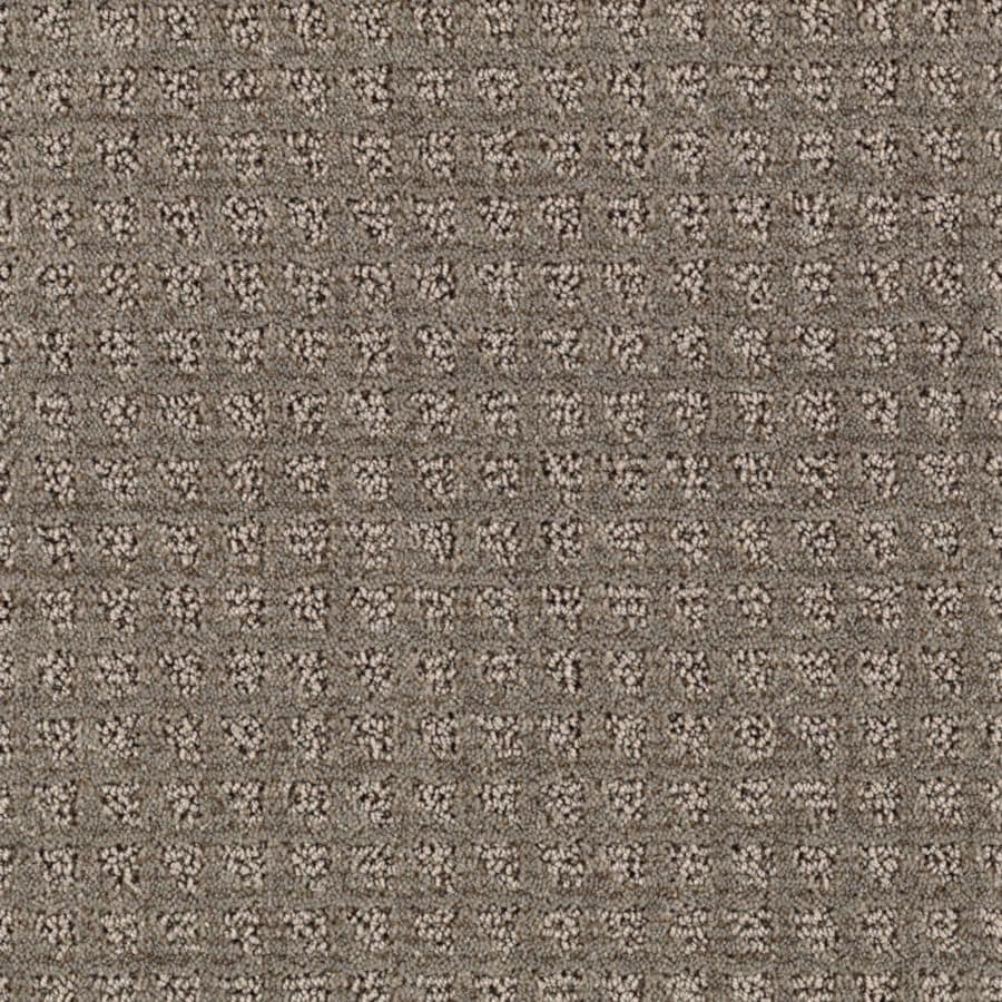 STAINMASTER Designboro Essentials Grey Flannel Cut and Loop Carpet Sample
