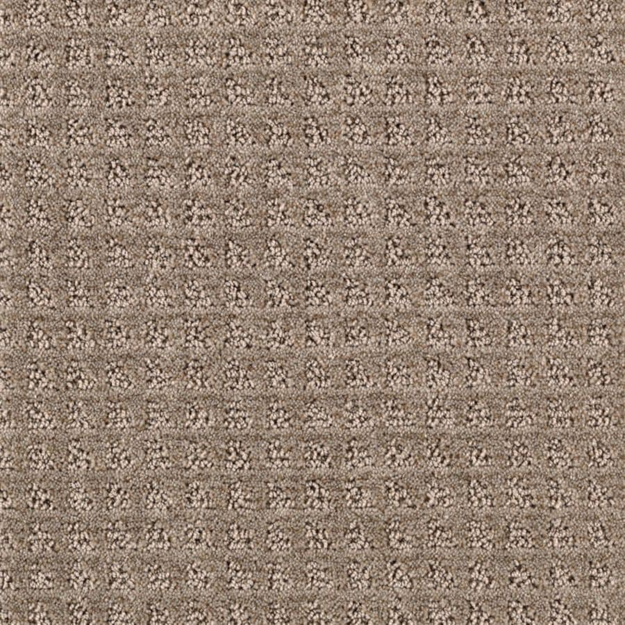 STAINMASTER Designboro Essentials Taupe Mist Cut and Loop Carpet Sample