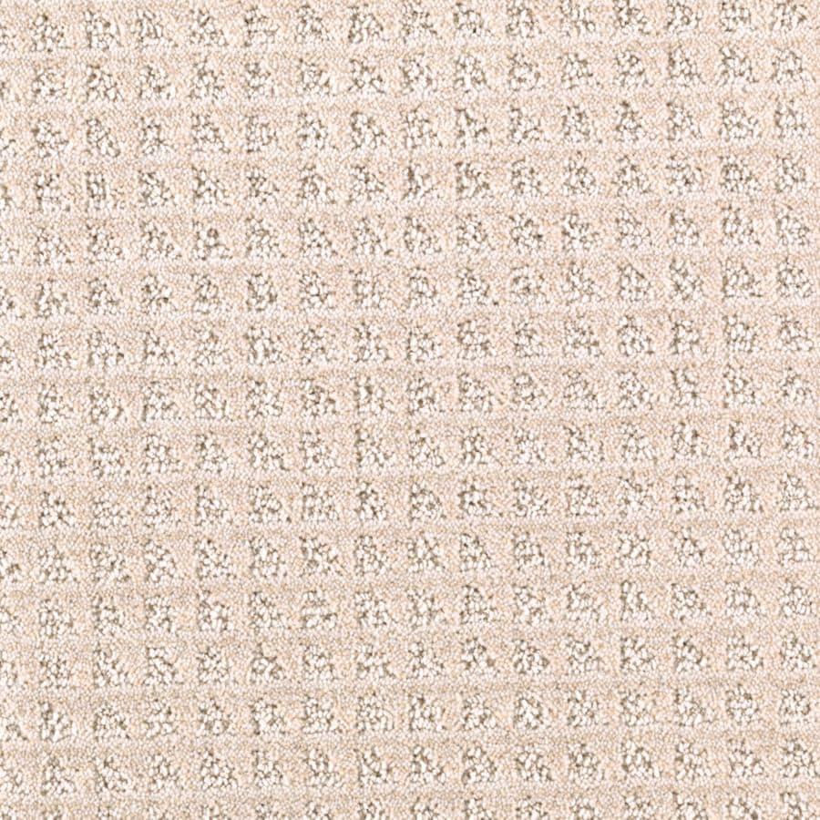 STAINMASTER Designboro Essentials Biscuit Cut and Loop Carpet Sample