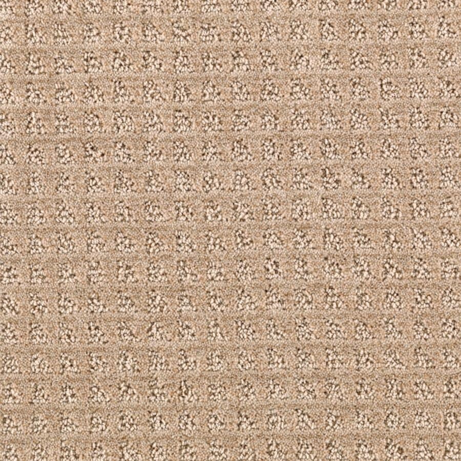 STAINMASTER Designboro Essentials Mesa Tan Cut and Loop Carpet Sample