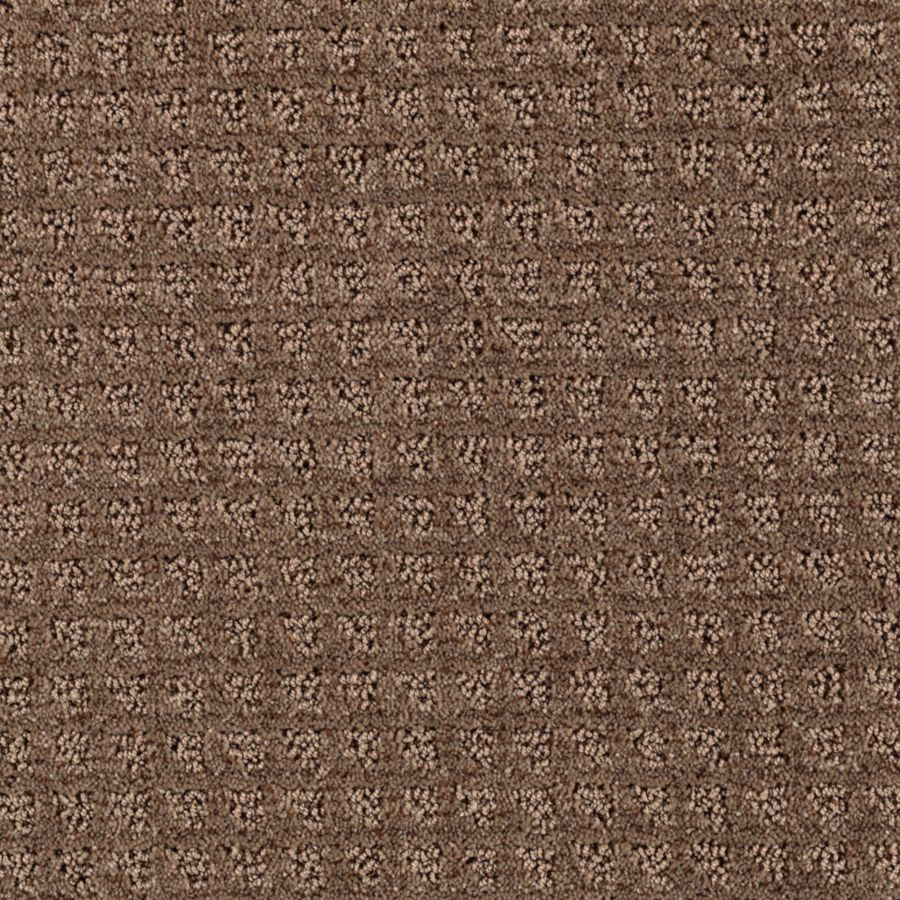 STAINMASTER Designboro Essentials Pinecone Cut and Loop Carpet Sample