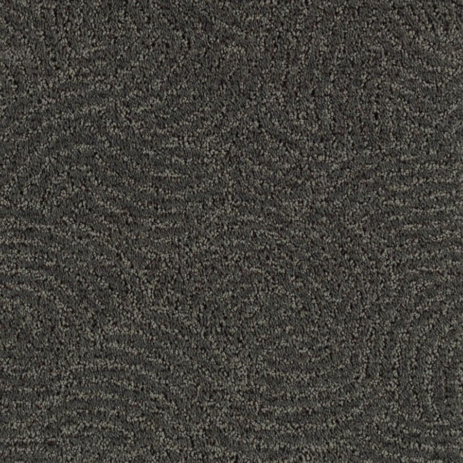 STAINMASTER Fashionboro Essentials Dark Shadows Cut and Loop Carpet Sample