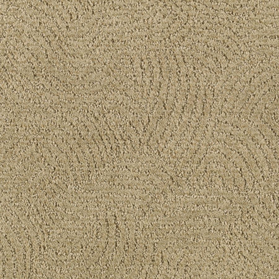 STAINMASTER Essentials Fashionboro Willow Carpet Sample