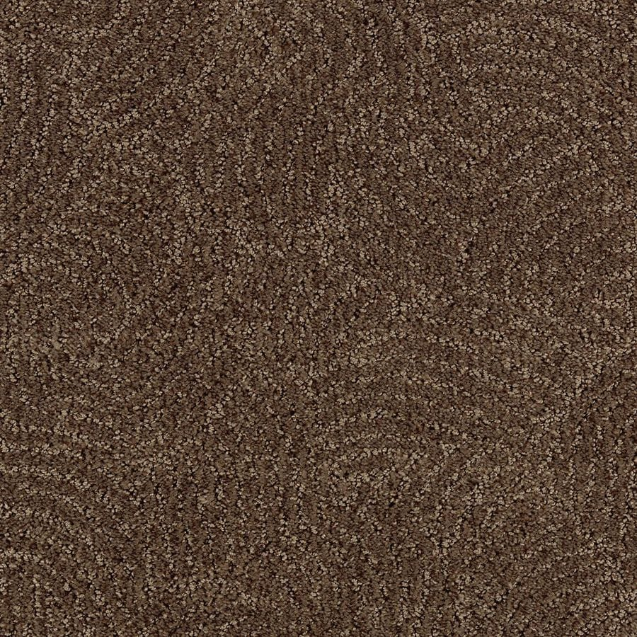 STAINMASTER Fashionboro Essentials Cigar Leaf Cut and Loop Carpet Sample
