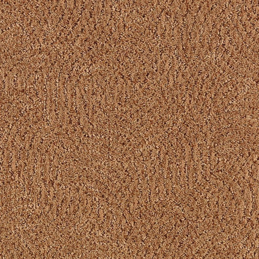 STAINMASTER Essentials Fashionboro New Penny Carpet Sample