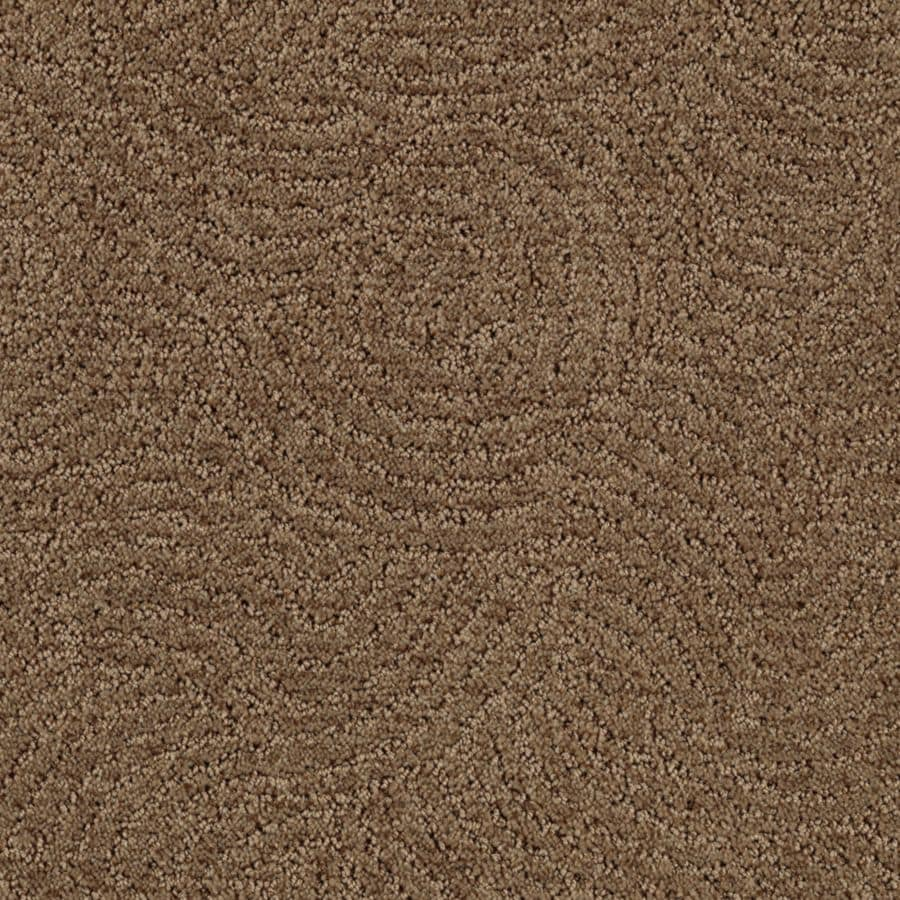 STAINMASTER Fashionboro Essentials Pinecone Cut and Loop Carpet Sample