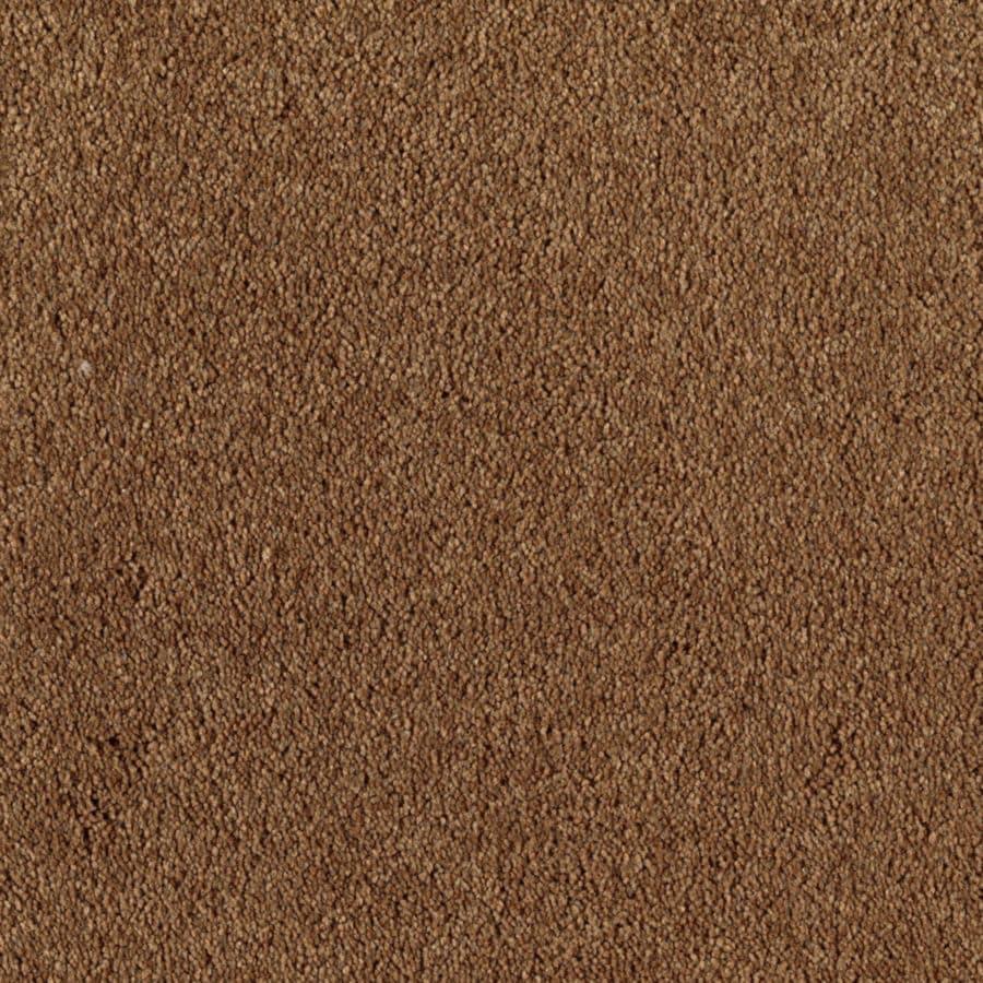 STAINMASTER Dream Big I Essentials Kodiak Plush Carpet Sample