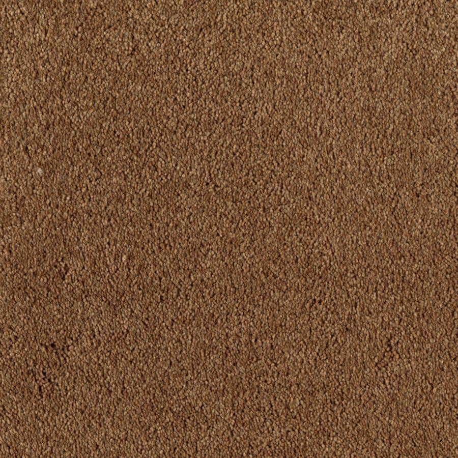 STAINMASTER Essentials Dream Big I Kodiak Carpet Sample