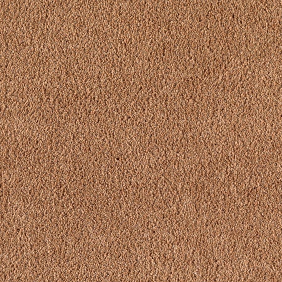 STAINMASTER Dream Big I Essentials Teriyaki Plus Carpet Sample