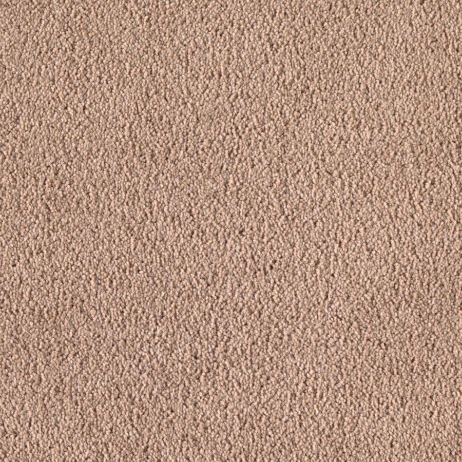 STAINMASTER Dream Big I Essentials Cookie Dough Plus Carpet Sample