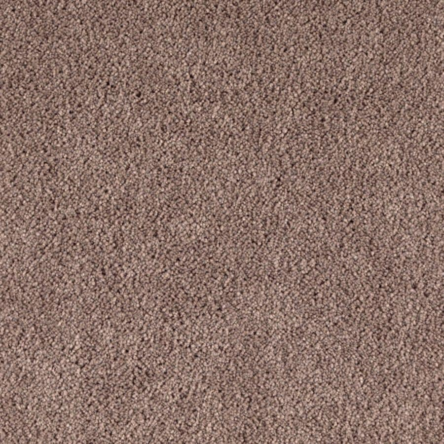 STAINMASTER Essentials Dream Big I Outrigger Carpet Sample