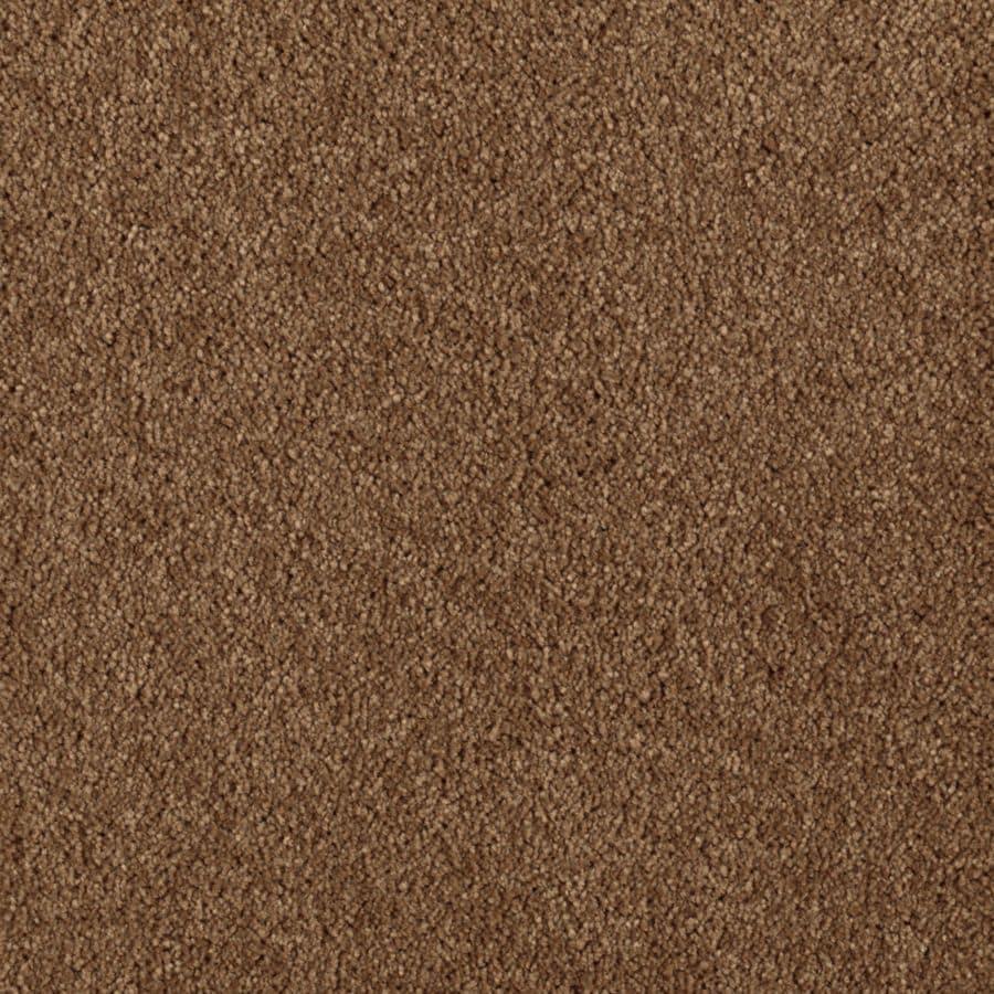 STAINMASTER Essentials Dream Big II Kodiak Plush Carpet Sample