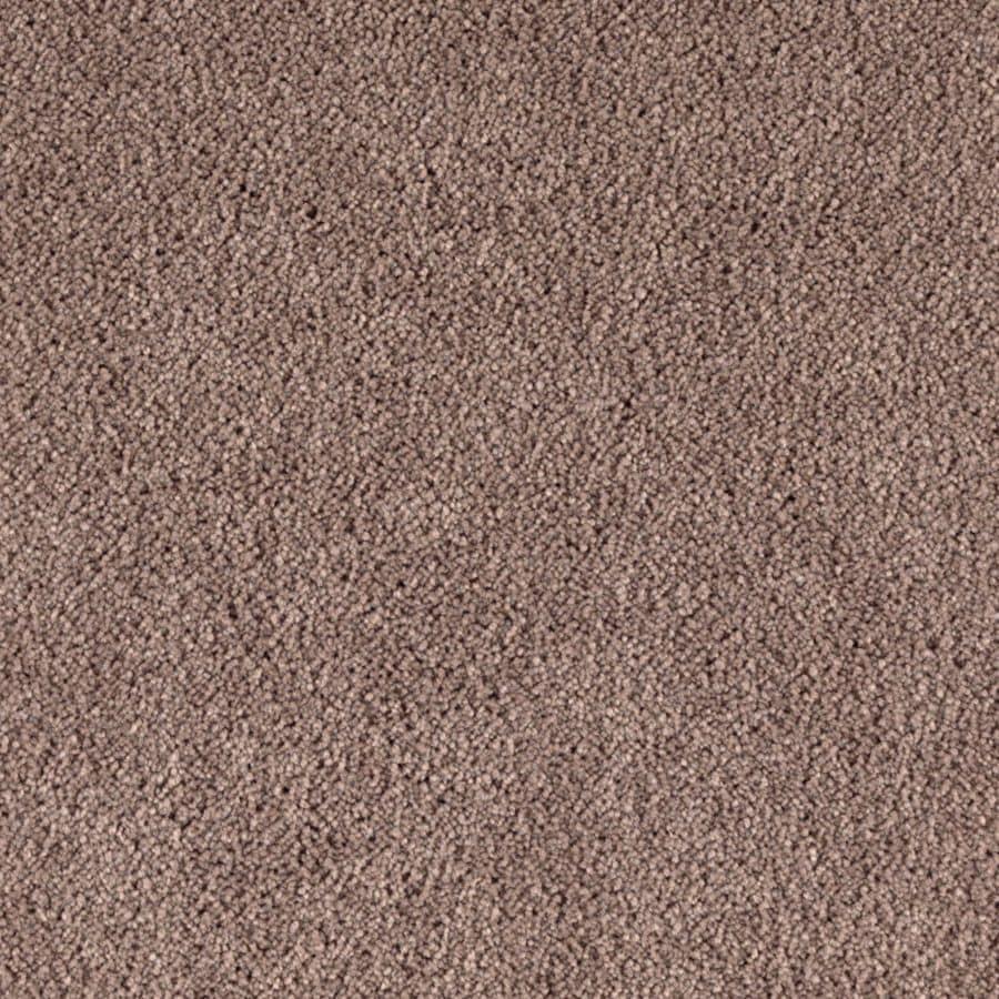 STAINMASTER Dream Big II Essentials Outrigger Plush Carpet Sample