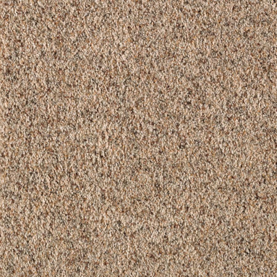 STAINMASTER Dream Big II Essentials Designer Magic Plus Carpet Sample