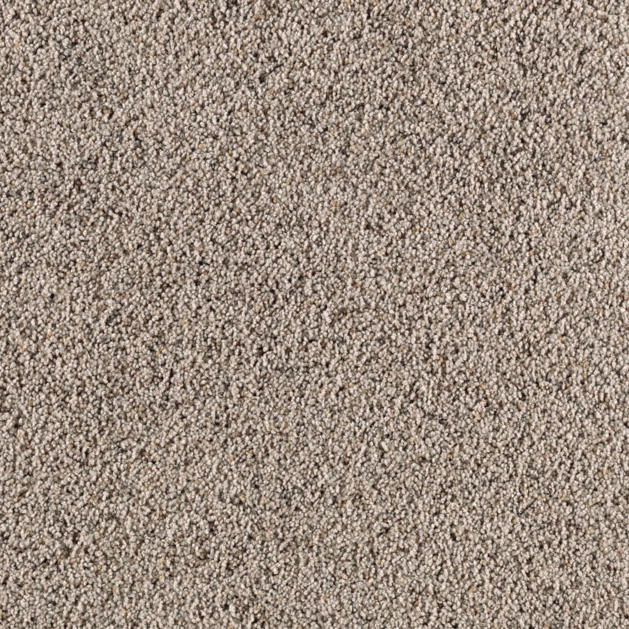 STAINMASTER Renewed Style I Essentials Autumn Fog Frieze Carpet Sample