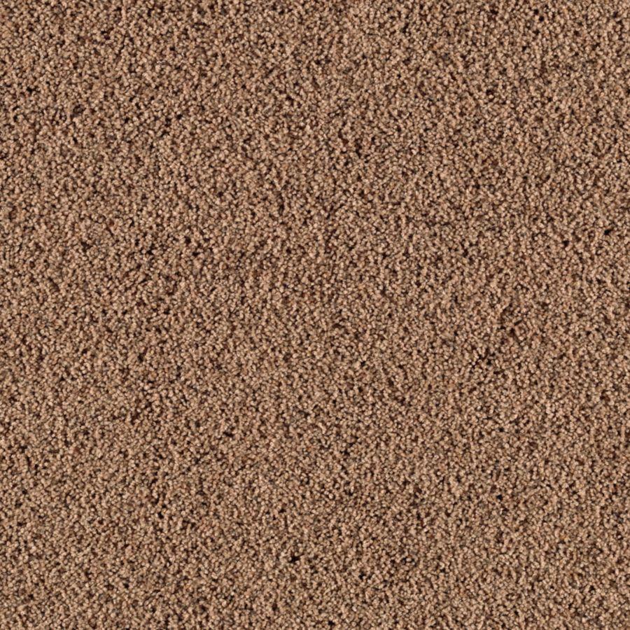 STAINMASTER Renewed Style I Essentials Hazelnut Frieze Carpet Sample