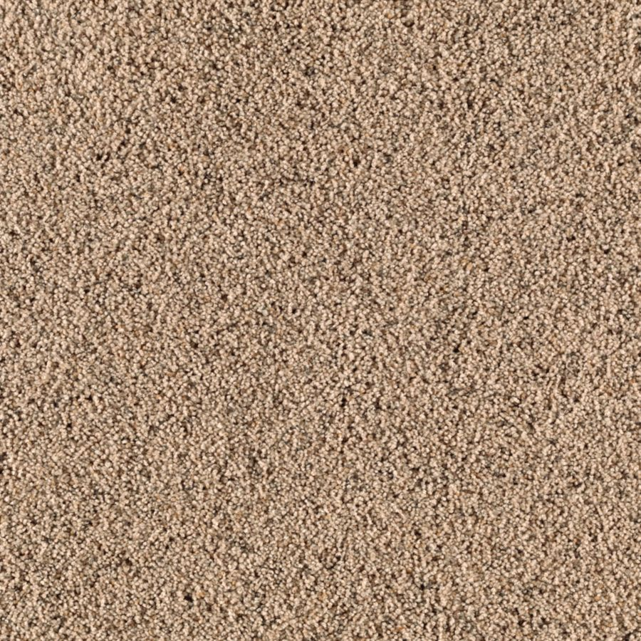 STAINMASTER Essentials Renewed Style II Wild Oats Shag/Frieze Carpet Sample