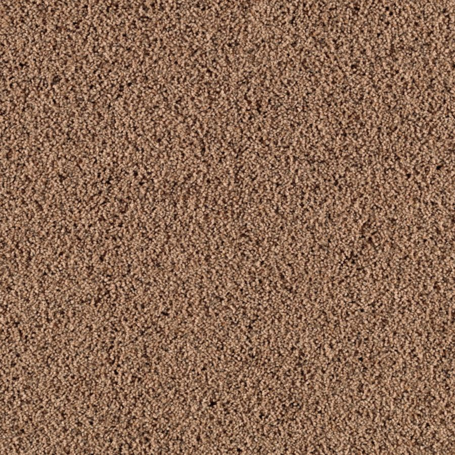 STAINMASTER Renewed Style III Essentials Hazelnut Frieze Carpet Sample