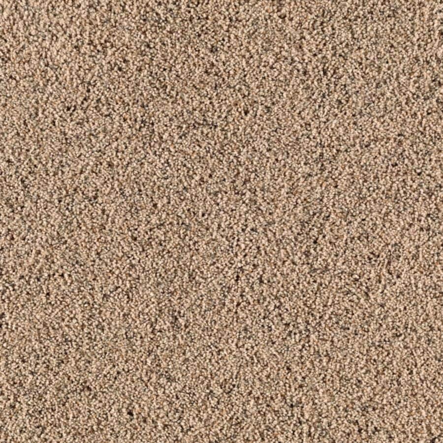 STAINMASTER Essentials Renewed Style III Wild Oats Shag/Frieze Carpet Sample