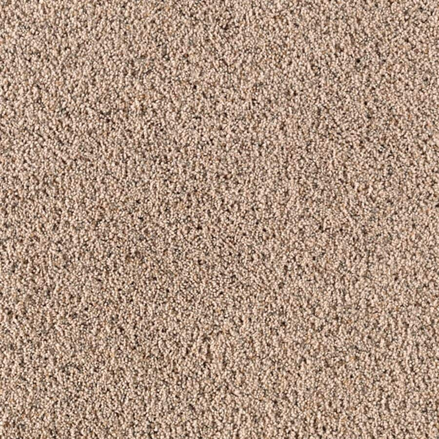STAINMASTER Essentials Renewed Style III Coastal Shag/Frieze Carpet Sample