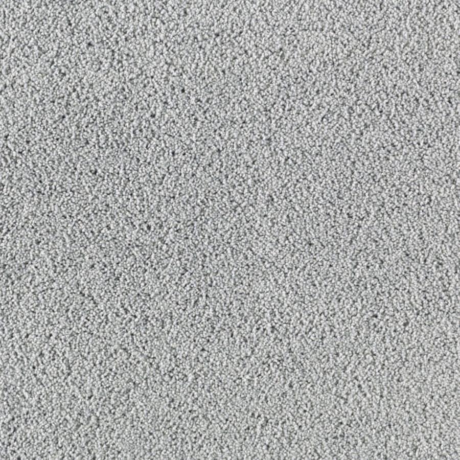 STAINMASTER Essentials Renewed Touch I Titanium Plush Carpet Sample