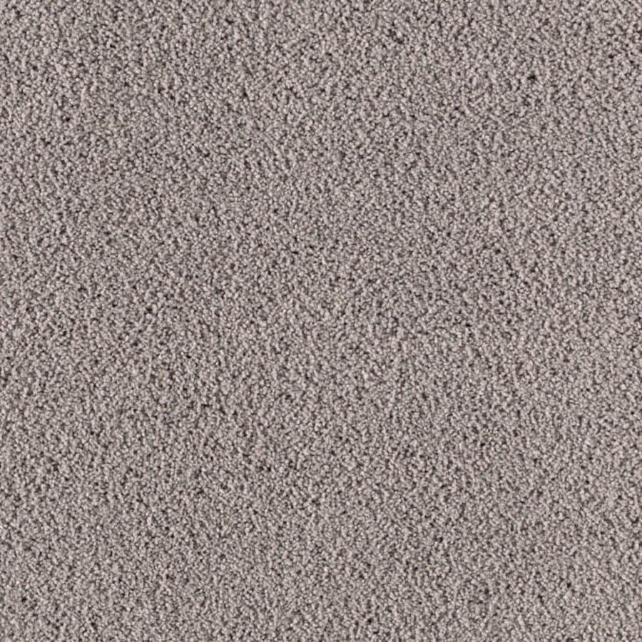 STAINMASTER Essentials Renewed Touch II Celeb City Carpet Sample