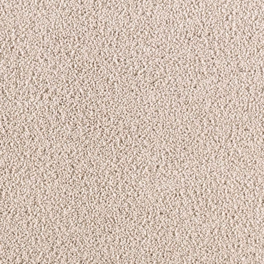 STAINMASTER Renewed Touch II Essentials Cross The Line Plush Carpet Sample