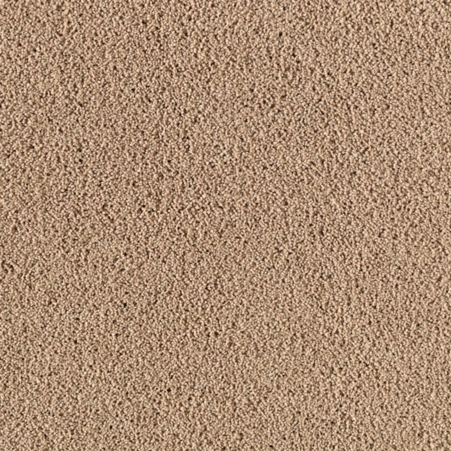 STAINMASTER Renewed Touch III Essentials Oiled Leather Plush Carpet Sample