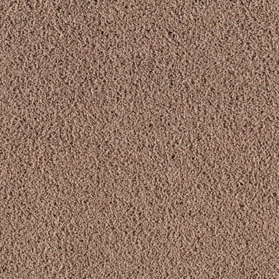 STAINMASTER Essentials Renewed Touch III Rebel Plush Carpet Sample