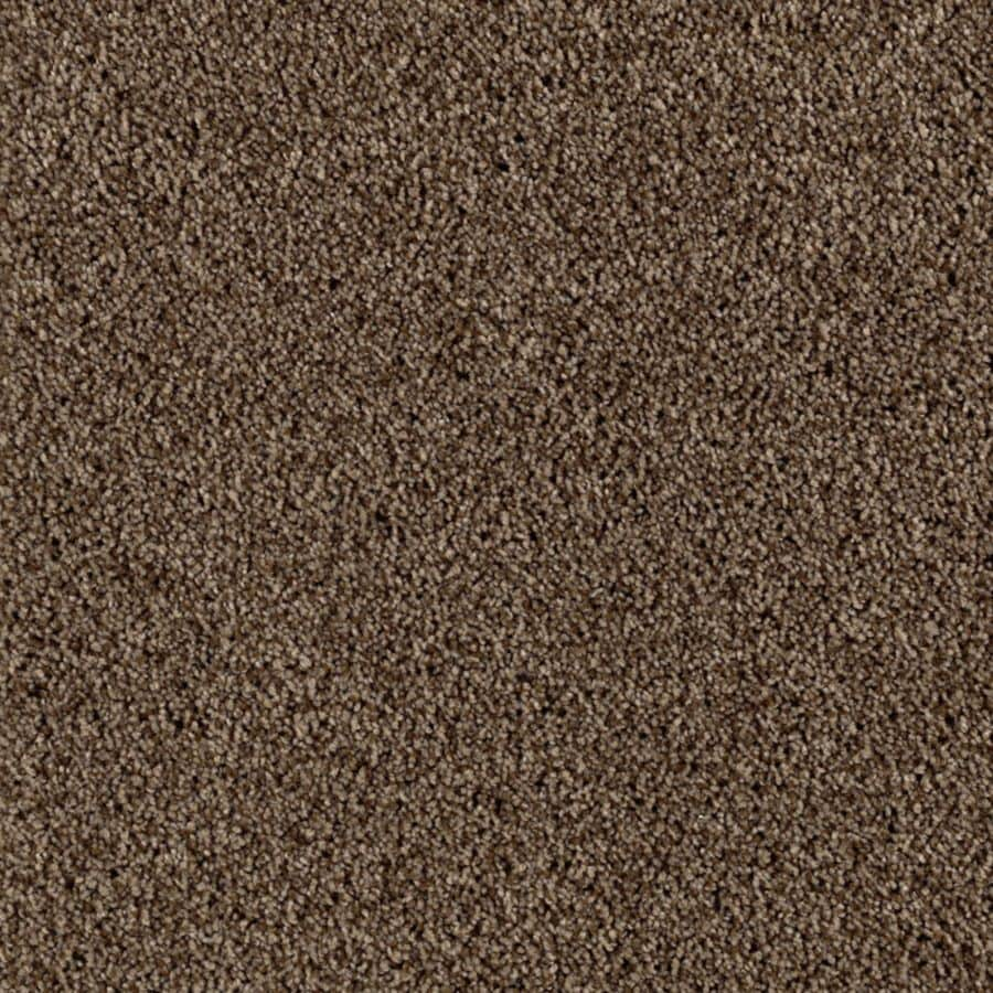 STAINMASTER Beautiful Design I Essentials Leatherwood Plush Carpet Sample