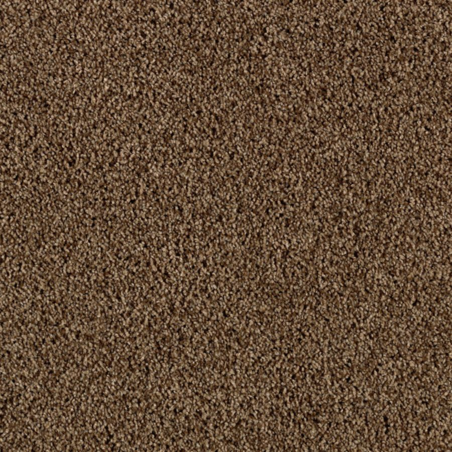STAINMASTER Essentials Beautiful Design I Frosty Spice Plush Carpet Sample
