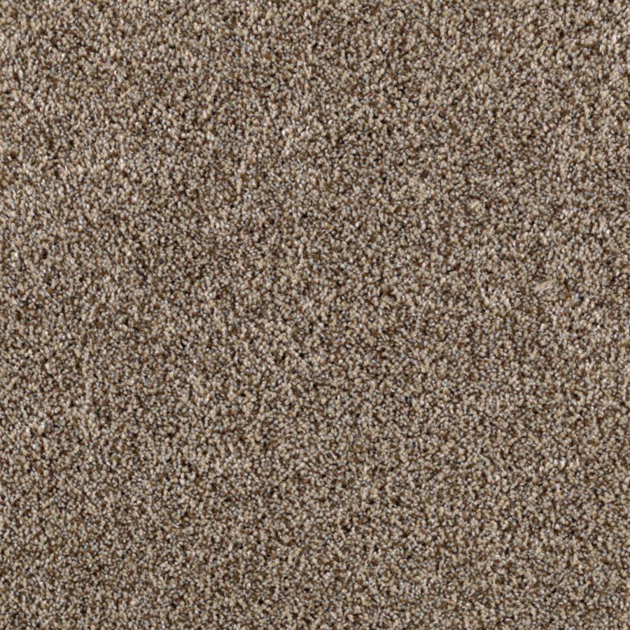 STAINMASTER Essentials Beautiful Design I Goose Down Plush Carpet Sample
