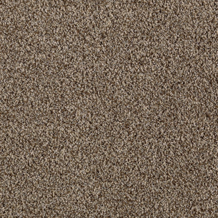 STAINMASTER Beautiful Design I Essentials Drifting Sand Plush Carpet Sample