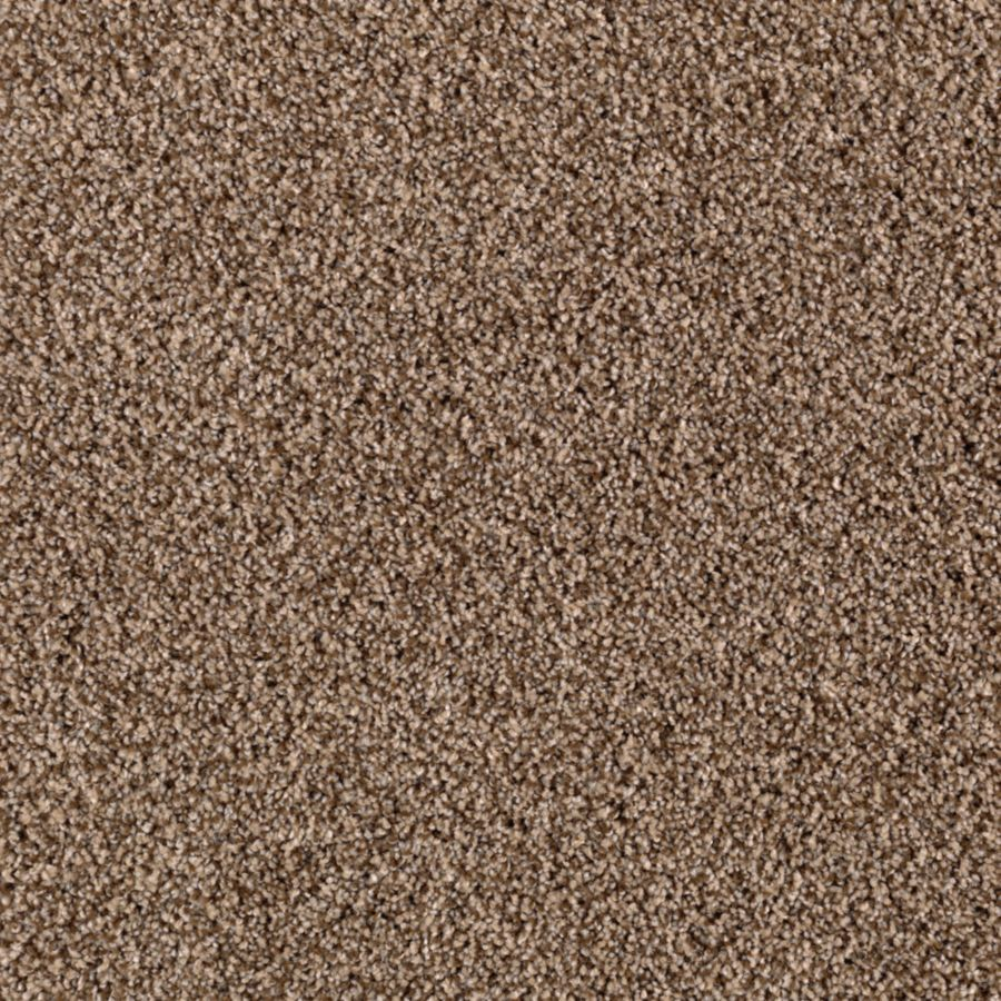 STAINMASTER Essentials Beautiful Design I Falcon Beige Carpet Sample