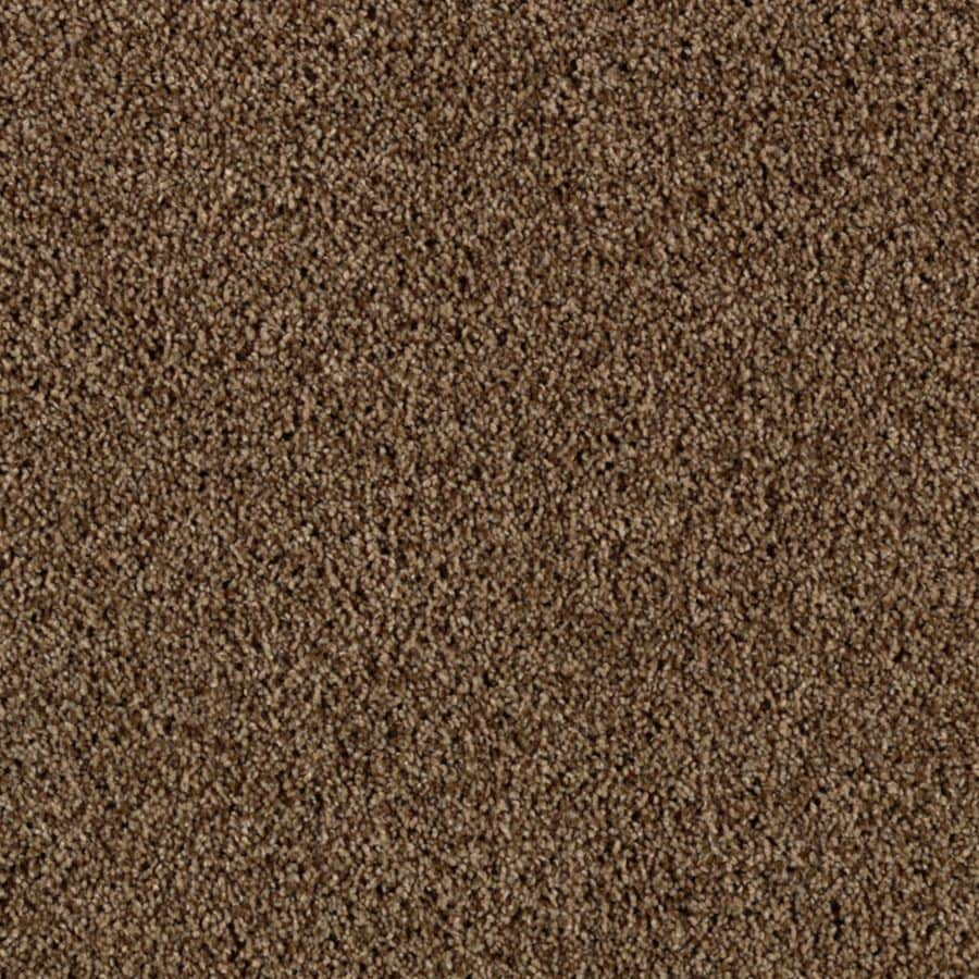 STAINMASTER Beautiful Design II Essentials Frosty Spice Plus Carpet Sample