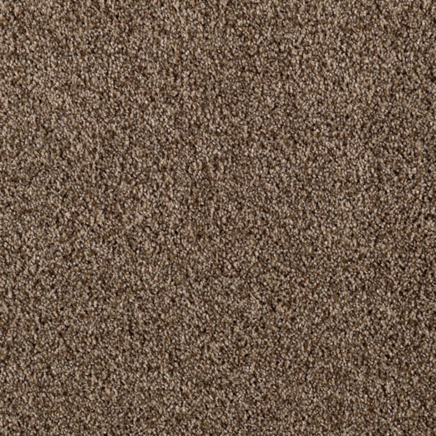 STAINMASTER Essentials Beautiful Design II Urban Putty Carpet Sample