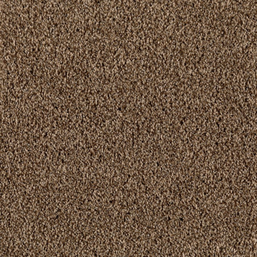 STAINMASTER Beautiful Design II Essentials Bedford Road Plush Carpet Sample