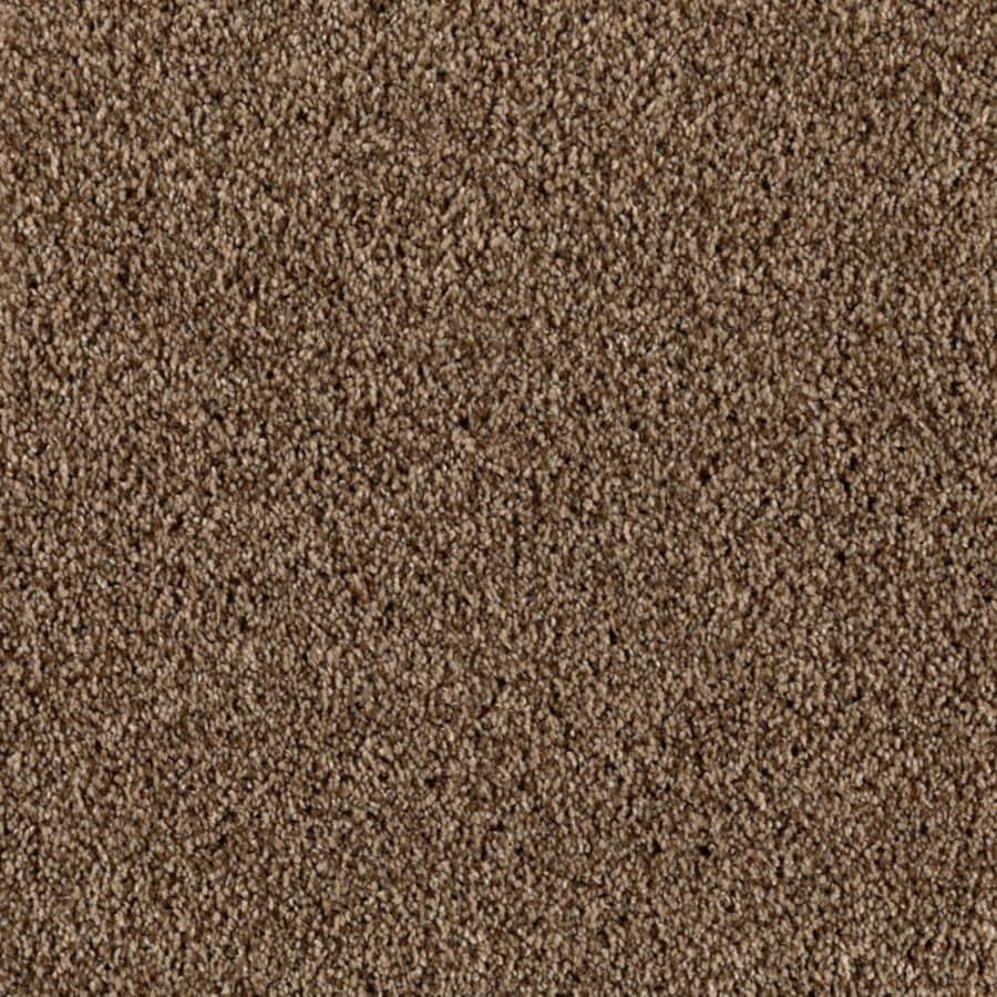 STAINMASTER Essentials Beautiful Design II Bedford Road Plush Carpet Sample