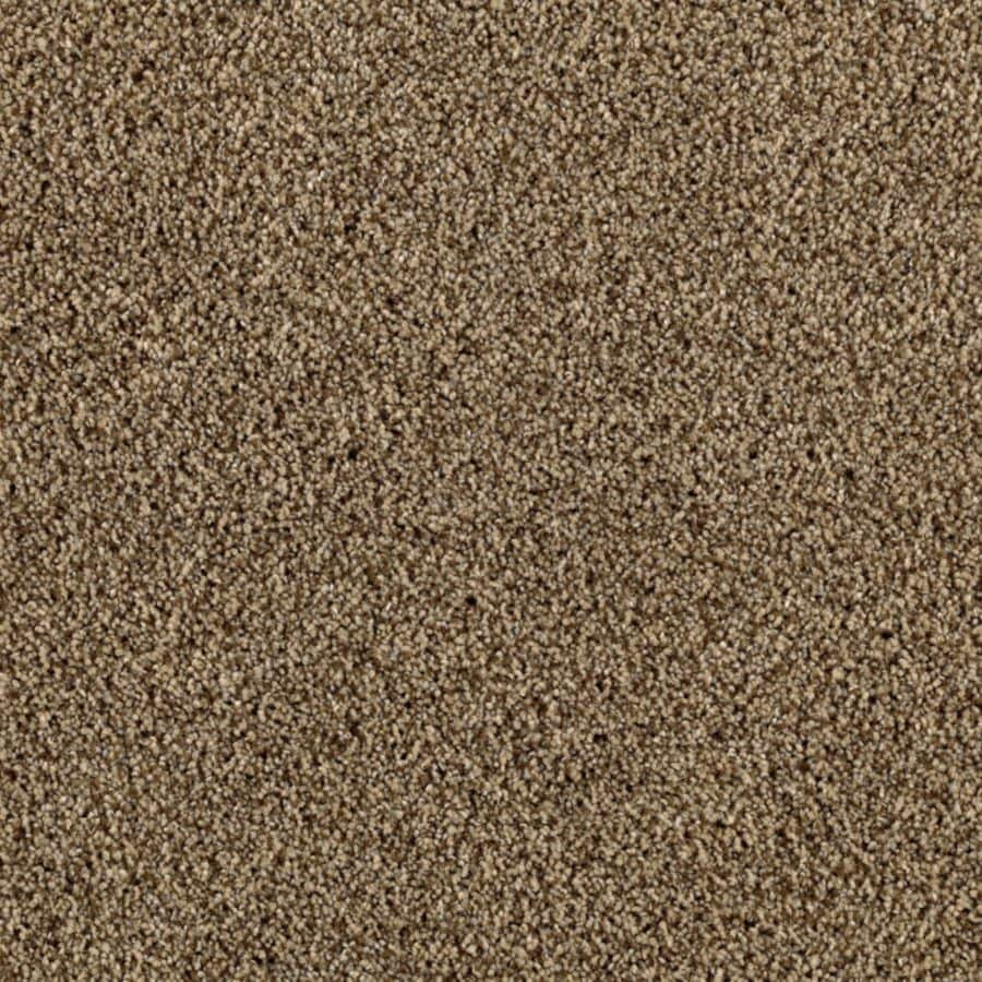 STAINMASTER Beautiful Design II Essentials Hickory Bark Plush Carpet Sample