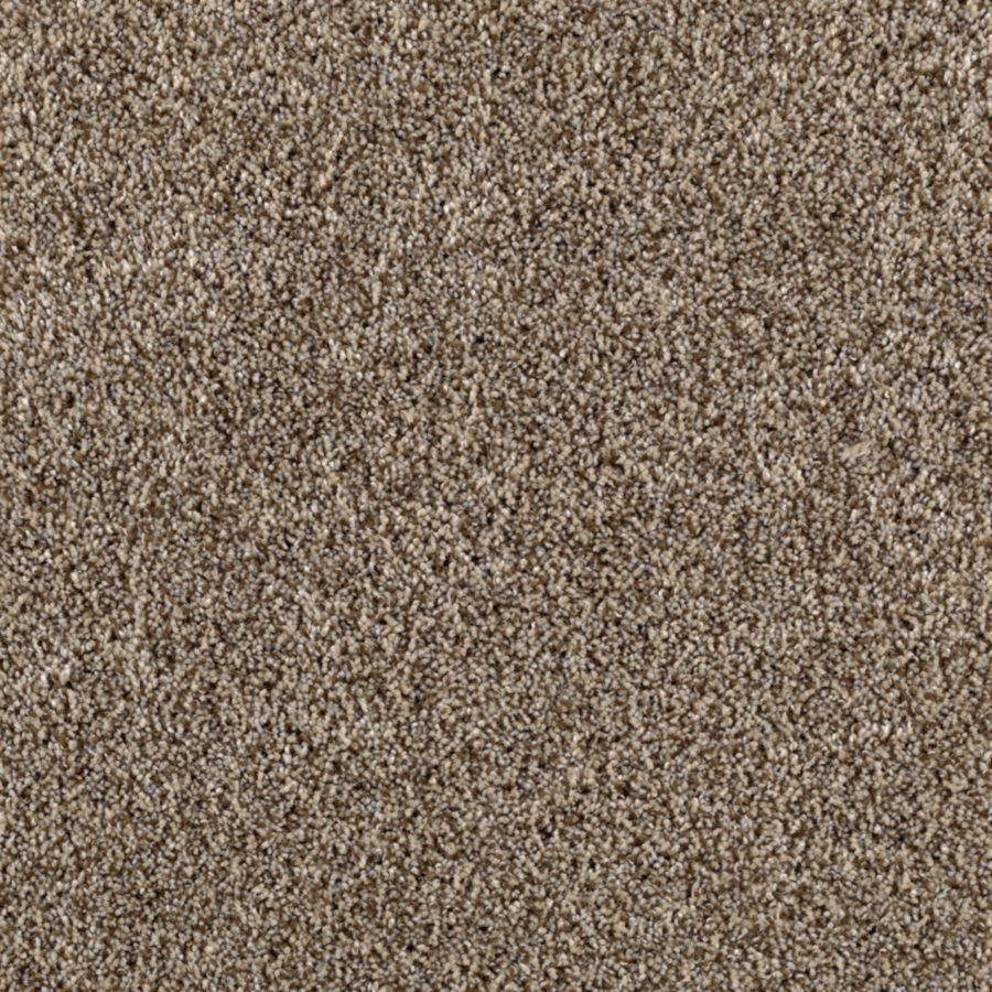 STAINMASTER Essentials Beautiful Design II Goose Down Carpet Sample